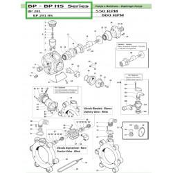 Delivery Valve Seat  BP 281 - BP 291 HS 30090022 Comet
