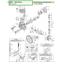 Diaphragm Viton ® BP 20/15 18000028 Comet