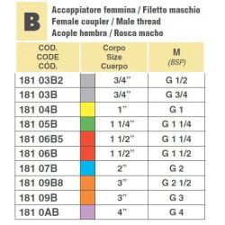 "CAMLOCK 3/4""F/GWINT1/2""M"