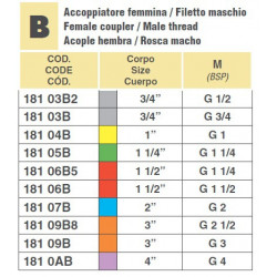 "CAMLOCK 3""F/GWINT 2 1/2""M"