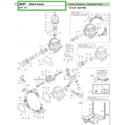 Connecting Rod Assembly 3 pezzi - 3 pcs BP 75 02050075 Comet