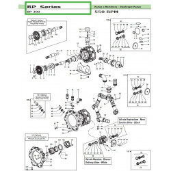 Delivery Valve ass.y kit  BP 300 50250048 Comet