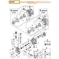 Piston Seal Kit  BXD...