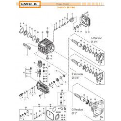 Check Valve Kit  GWD-K 24090154 Comet