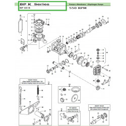 Suction/Delivery Valve  BP...