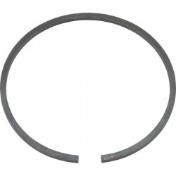 Pump piston ring Bertolini POLY
