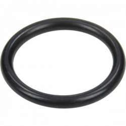 O-ring 31,Sx4,25 AR 250 bp...