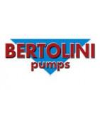 Bertolini pump parts